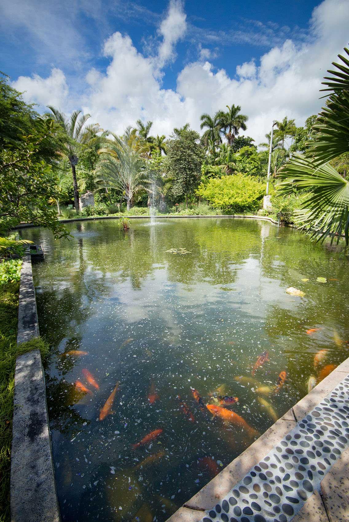 Miami Beach Botanical Garden - ENJOY MIAMI BEACH