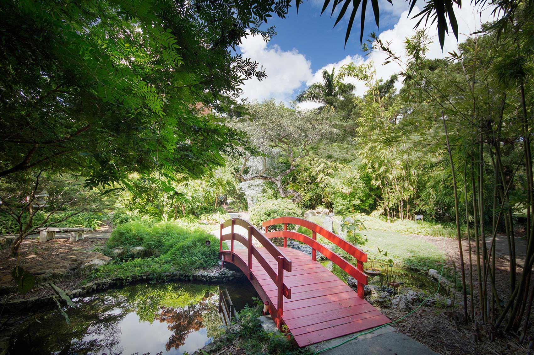 Miami beach botanical garden entrance fee garden ftempo for Busch gardens ez pay phone number