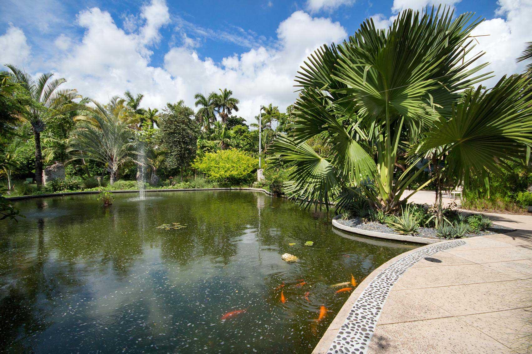 Miami beach botanical garden enjoy miami beach - Manhattan beach botanical garden ...
